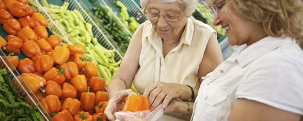 Chambersburg, Pennsylvania-grocery-shopping-senior-care-services